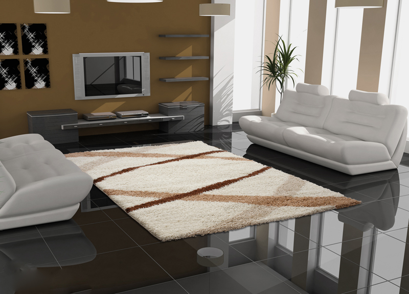 tapis de salon table moquette design moderne 80x150cm ebay. Black Bedroom Furniture Sets. Home Design Ideas